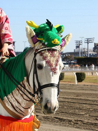 川崎競馬の誘導馬01月開催 辰Ver-120107-25