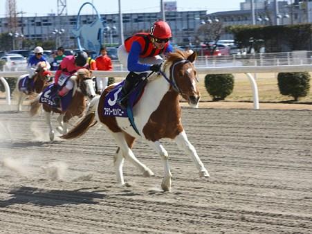120219ポニーレースin川崎-レース-11