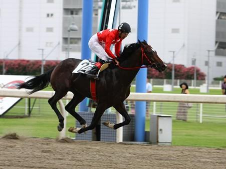 10728川崎1R2歳新馬6ハ優勝ラピッドアラシ