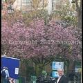 Photos: P3050467