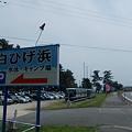 写真: 白ひげ浜