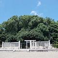 Photos: 開化天皇陵