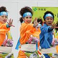 夢想漣えさし_34 - かみす舞っちゃげ祭り2011