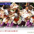 写真: 桜華_15 - よさこい祭りin光が丘公園2011