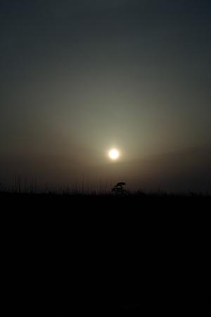 Sunset04022012dp2-01