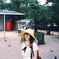 Photos: 頭の上に鳩