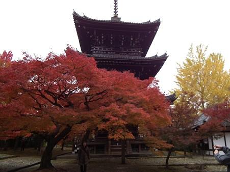 京都 413