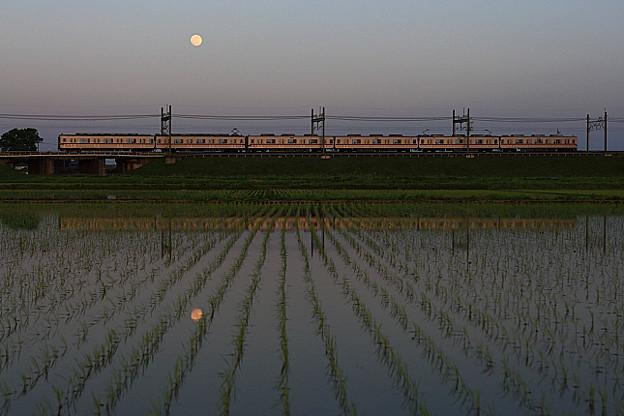 241列車