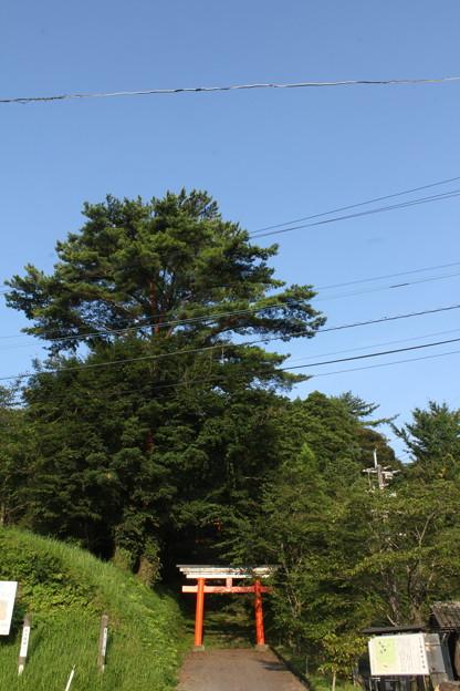 写真: 皇子原神社