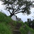 Photos: 伊野灘駅 点景2