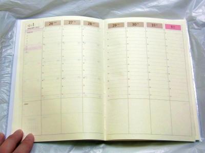 2012diary03