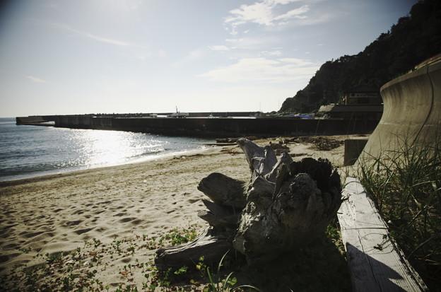 Photos: 漁港の側に朽ちて