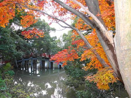 太宰府:太鼓橋と紅葉