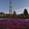 写真: 大きな鉄塔