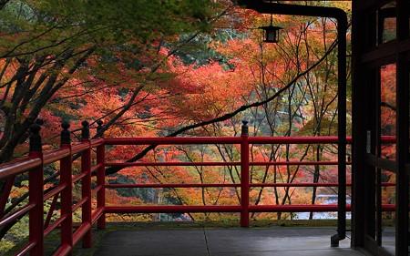 今熊野観音寺08
