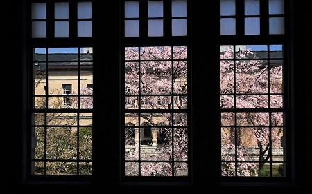 京都府庁・旧本館16