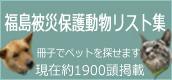 bunner120105-3