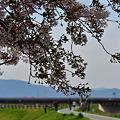 Photos: 2012_0415_160237