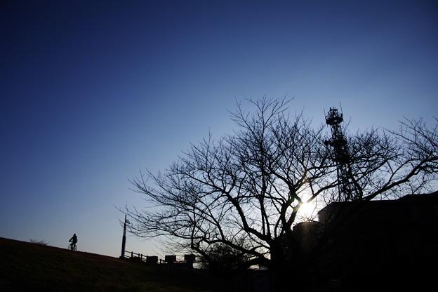 Photos: 【冬のコンクール用】冬の朝