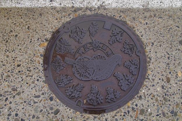 s3550_野沢温泉村マンホール_通常版