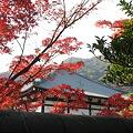 京都2007.天竜寺1