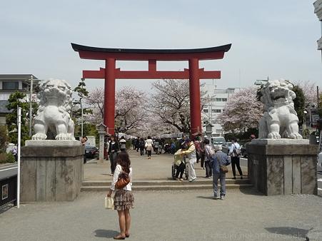 120413-八幡さま (65)
