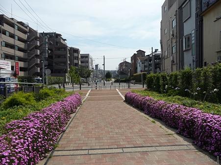 110622-東横廃線 東白楽→反町 (20)