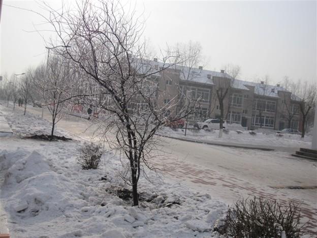 龍外学院冬景色
