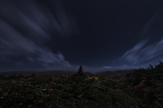 秋夜の真ん中で