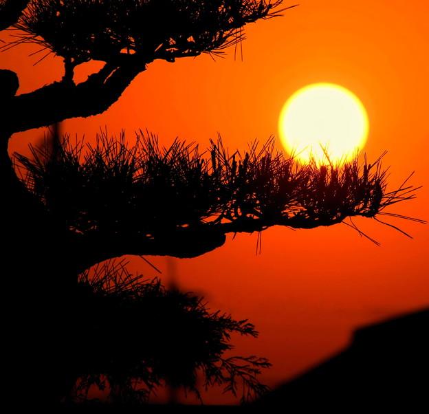 夕陽を乗っけて ♪