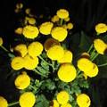 Photos: 201207050011