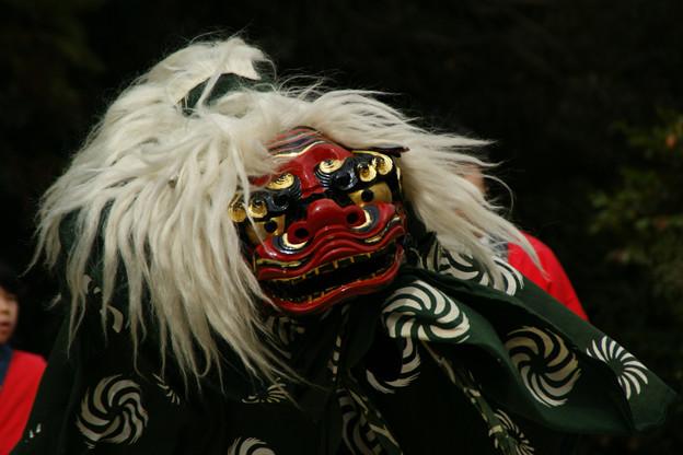 Photos: 獅子舞3、鎌倉!(111023)