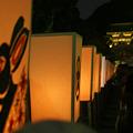 Photos: ぼんぼり祭り