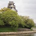新緑の岡山城