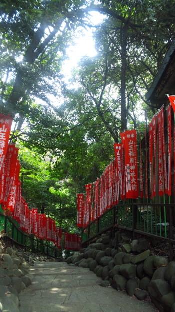 山王稲荷神社参道 (千代田区永田町)