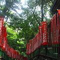 写真: 山王稲荷神社参道 (千代田区永田町)