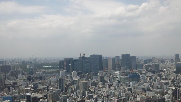 Photos: 今日の東京2/17