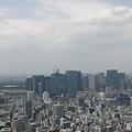 今日の東京2/17