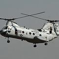 写真: CH-46E HMM-265 DRAGONS