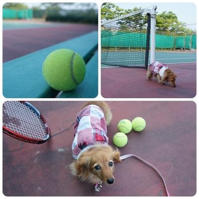 20120527 tennis