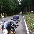 Photos: 林道?