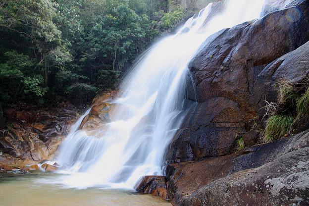 20120324妹背の滝