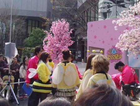 DSC04519-120406mbs-sakura