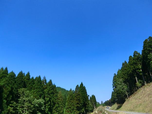峰山・砥峰線