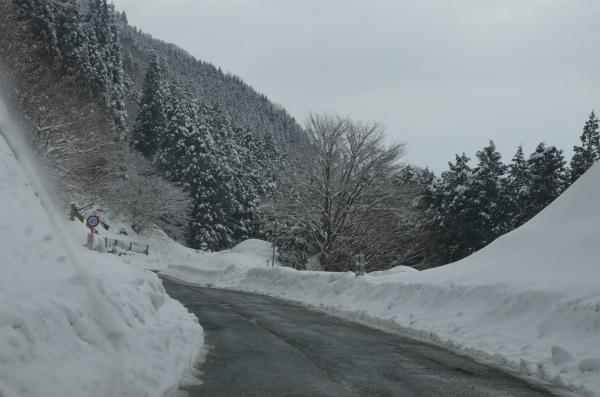 今年は雪が多く運転が心配