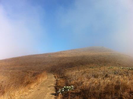 晴れてきた霧